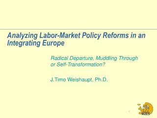 Analyzing Labor-Market Policy Reforms in an Integrating Europe