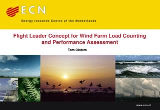 Flight Leader Concept for Wind Farm Load Counting  and Performance Assessment
