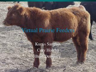 Virtual Prairie Feeders