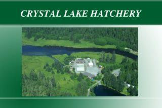 CRYSTAL LAKE HATCHERY