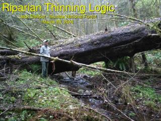 Riparian Thinning Logic Jack Sleeper - Siuslaw National Forest March 20, 2008