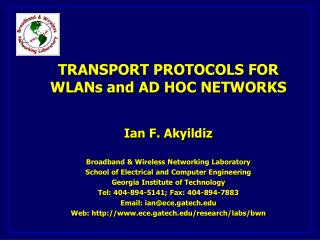 Overview of Transport Problems in WLANs