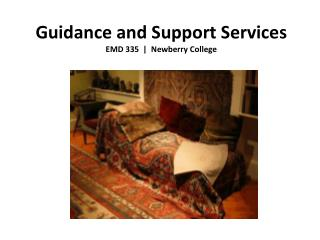 Guidance and Support Services EMD 335  |  Newberry College