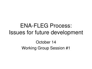 ENA-FLEG Process:  Issues for future development