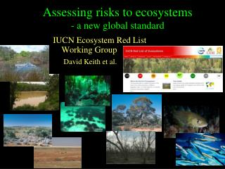 Assessing risks to ecosystems - a new global standard