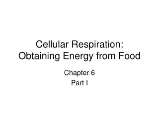Cellular Respiration:  Obtaining Energy from Food
