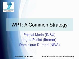 WP1: A Common Strategy
