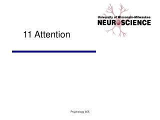 11 Attention