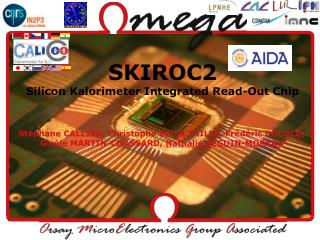 SKIROC2 Silicon Kalorimeter Integrated Read-Out Chip