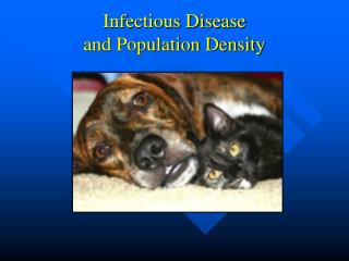 Infectious Disease and Population Density