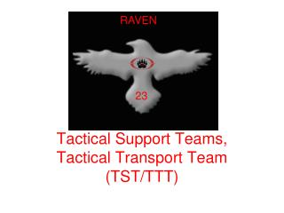 Tactical Support Teams, Tactical Transport Team (TST/TTT)