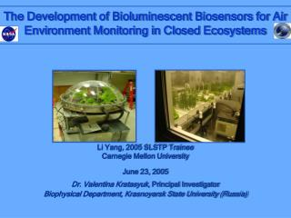The Development of Bioluminescent Biosensors for Air Environment Monitoring in Closed Ecosystems