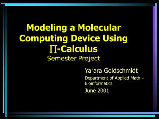 Modeling a Molecular Computing Device Using  -Calculus Semester Project