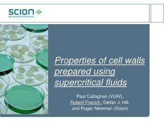 Properties of cell walls prepared using supercritical fluids