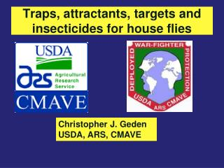 Traps, attractants, targets and insecticides for house flies