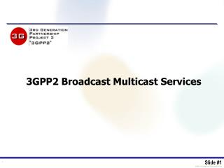 3GPP2 Broadcast Multicast Services