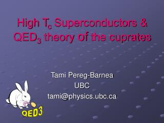 High T c  Superconductors & QED 3  theory  of  the cuprates