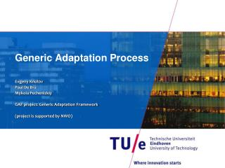 Generic Adaptation Process