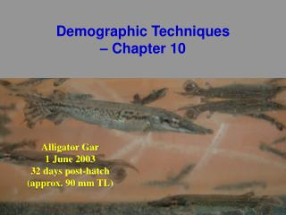 Demographic Techniques  – Chapter 10