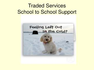 Traded Services School to School Support