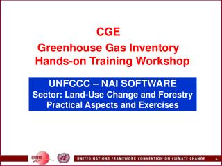 UNFCCC – NAI SOFTWARE  Sector: Land-Use Change and Forestry Practical Aspects and Exercises