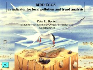 BIRD EGGS as indicator for local pollution and trend analysis