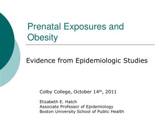 Prenatal Exposures and Obesity