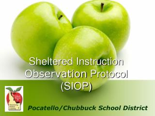 Sheltered Instruction  Observation  Protocol (SIOP)