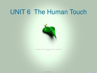 UNIT 6  The Human Touch