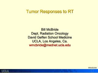 Determinants of Tumor Cure