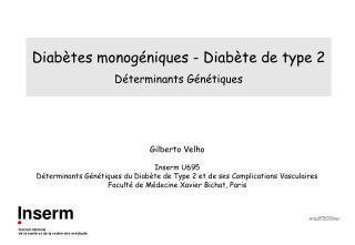 Diabètes monogéniques - Diabète de type 2 Déterminants Génétiques