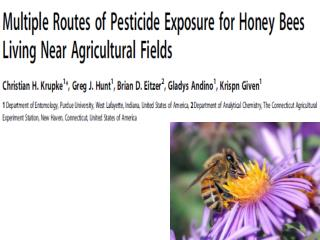 Some Crops pollinated by Bees