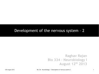 Development of the nervous system – 2