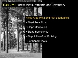 FOR 274:  Forest Measurements and Inventory