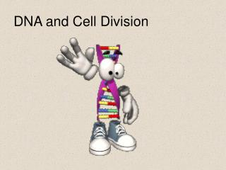 DNA and Cell Division