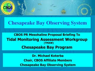 Chesapeake Bay Observing System