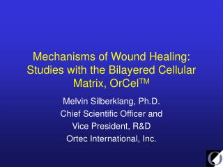 Mechanisms of Wound Healing: Studies with the Bilayered Cellular Matrix, OrCel TM