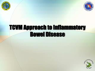 TCVM Approach to Inflammatory   Bowel Disease