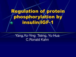 Regulation of protein phosphorylation by insulin/IGF-1