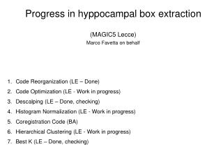 Progress in hyppocampal box extraction