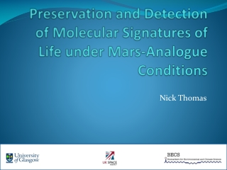 Preservation and Detection of Molecular Signatures of Life under Mars-Analogue Conditions