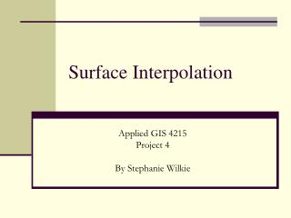 Surface Interpolation