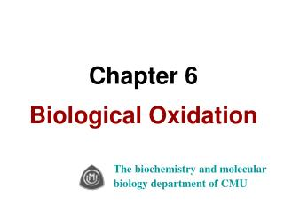 Chapter 6 Biological Oxidation