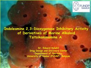 Indoleamine 2,3-Dioxygenase Inhibitory Activity of Derivatives of Marine Alkaloid