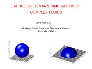 LATTICE BOLTZMANN SIMULATIONS OF COMPLEX FLUIDS