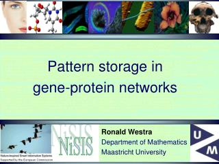 Pattern storage in  gene-protein networks