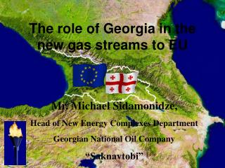 Mr. Michael Sidamonidze, Head of New Energy Complexes Department Georgian National Oil Company