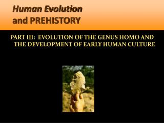 Human Evolution  and PREHISTORY