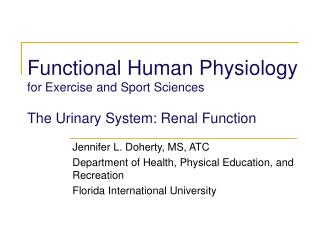 Functional Human Physiology for Exercise and Sport Sciences  The Urinary System: Renal Function
