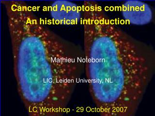 Cancer and Apoptosis combined An historical introduction Mathieu Noteborn